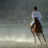 Georgian Championship in Horse Riding